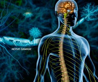 В Японии Начались Первые Клинические Исследования с Применением Стволовых Клеток для Лечения Травм Спинного Мозга