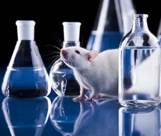 Новые соединения могут применятся для терапии множества заболеваний