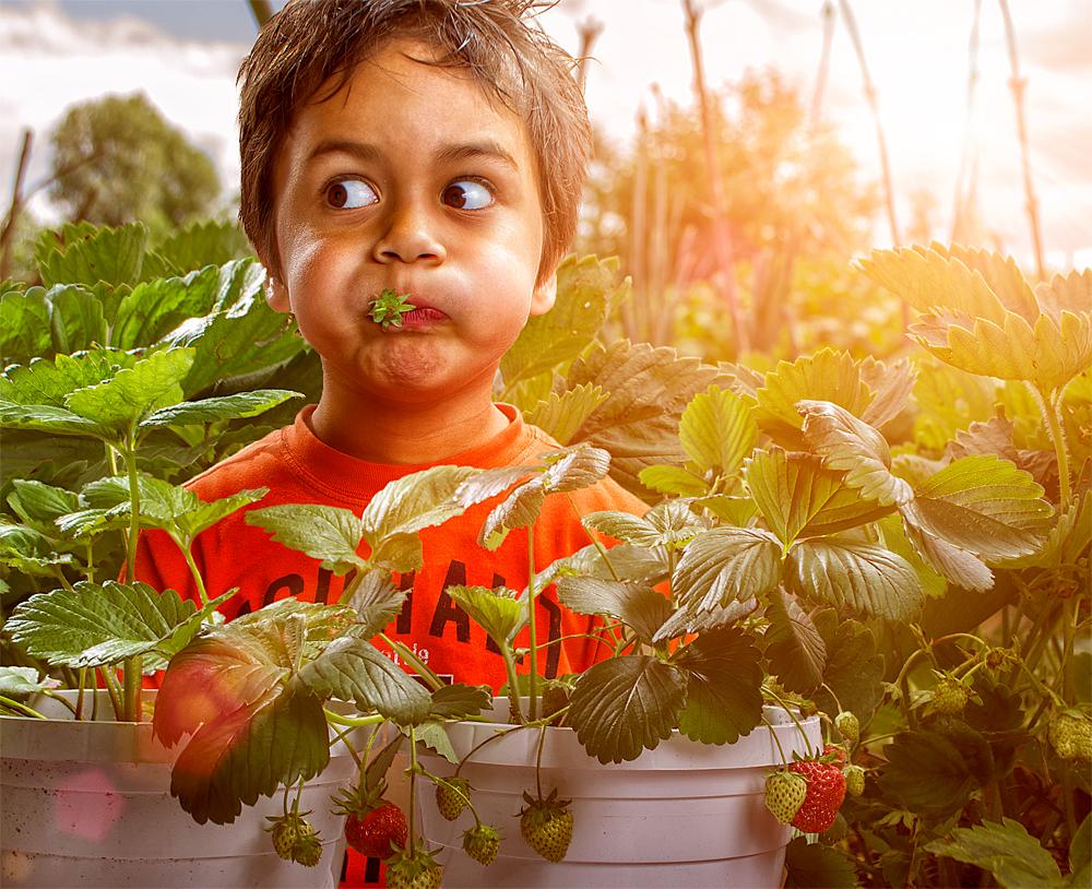 Причудливый Мир Детства – Портреты Эдриана Соммелинга