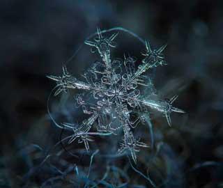 Фотографии Алексея Клятова Раскрывают Уникальную Красоту Снежинок
