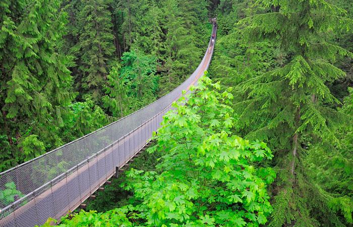 Висячий Мост в Канаде
