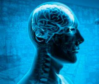 Распад Связей Мозга, Обнаружен в Начале Болезни Альцгеймера