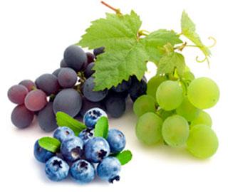Красный Виноград и Черника Могут Усиливать Иммунные Функции