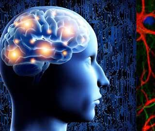 Травмы спинного мозга могут вызвать повреждение головного мозга