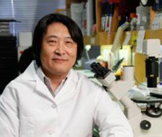 Сероводород – Требуется для Правильного Функционирования Стволовых Клеток