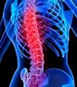 Будущее в Лечении Травм Спинного Мозга за Стволовыми Клетками