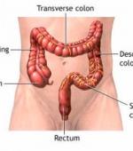 Нарушения Функции Органов Пищеварения при Спинальной Травме
