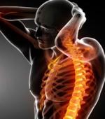 О Восстановлении при Травмах Спинного Мозга