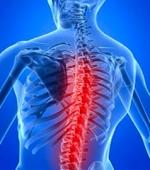 Перспективы Восстановления Локомоции при Травмах и Болезнях Спинного Мозга