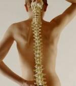Распространенность Травматической Болезни Спинного Мозга