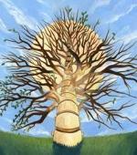 Рубцы Стволовых Клеток Восстанавливают Травмы Спинного Мозга