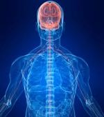 Спастичность и Невропатические Боли
