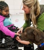 Терапия с Собаками Помогает Научиться Двигаться После Травмы Спинного Мозга