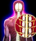Частые Вопросы Связанные с Травмой Спинного Мозга и её Лечением