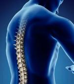 О Восстановлении После Травмы Спинного Мозга